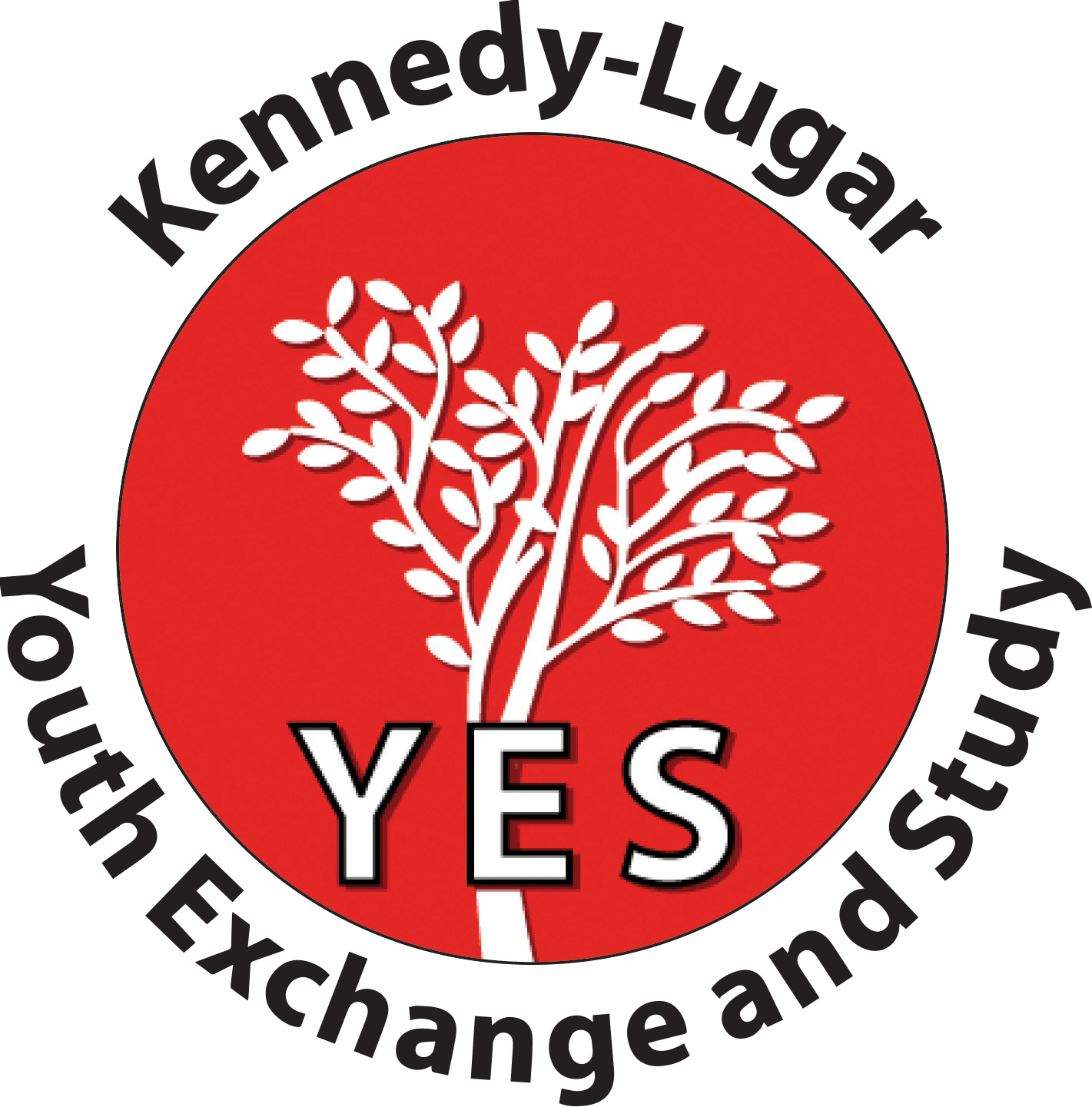 YES – Youth Exchange and Study